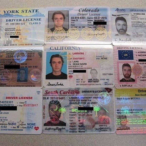 Fake ID & Drivers license